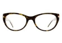 Colors In Optics C976 TSCM Tortoise Cream